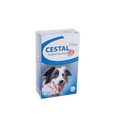 Cestal-Plus-fereghajto-tabletta-kutyaknak-10x